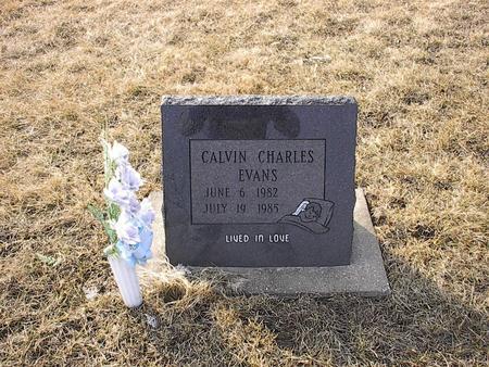 EVANS, CALVIN CHARLES - Iowa County, Iowa | CALVIN CHARLES EVANS