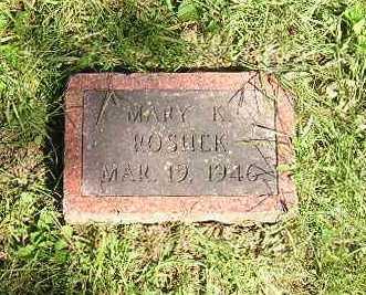 ROSHEK, MARY - Iowa County, Iowa | MARY ROSHEK