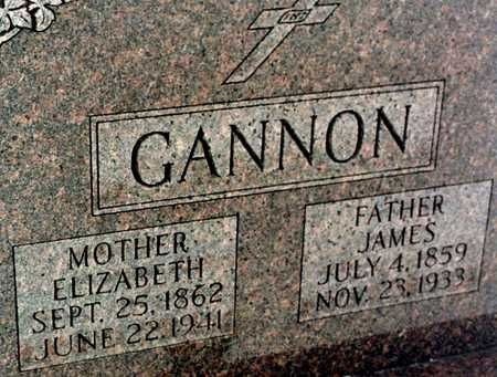 GANNON, JAMES - Jackson County, Iowa | JAMES GANNON