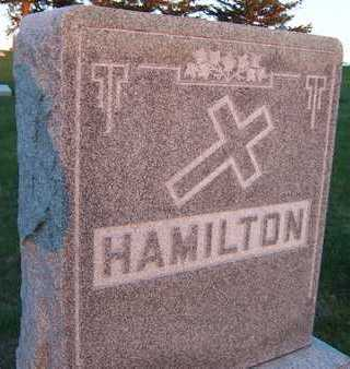 HAMILTON, FAMILY MONUMENT - Jackson County, Iowa | FAMILY MONUMENT HAMILTON