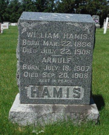 HAMIS, ARNULF - Jackson County, Iowa | ARNULF HAMIS