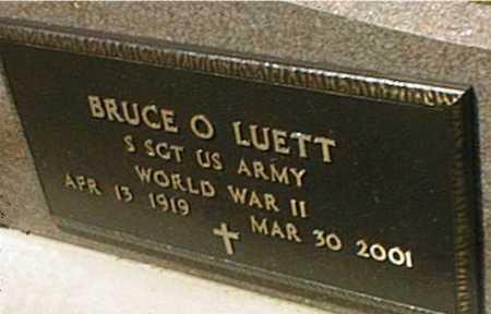LUETT, BRUCE O. - Jackson County, Iowa | BRUCE O. LUETT