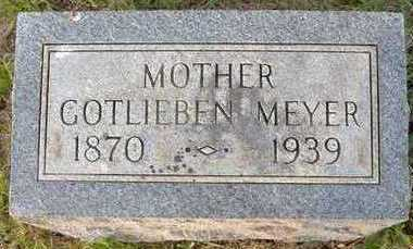 MEYER, GOTLIEBEN - Jackson County, Iowa | GOTLIEBEN MEYER