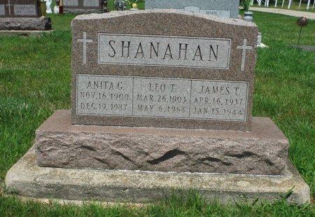 DONOVAN SHANAHAN, ANITA G. - Jackson County, Iowa   ANITA G. DONOVAN SHANAHAN