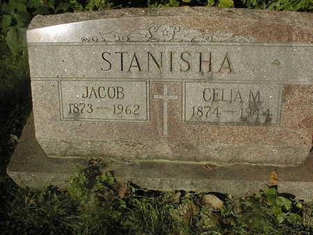 STANISHA, CELIA M. - Jackson County, Iowa | CELIA M. STANISHA