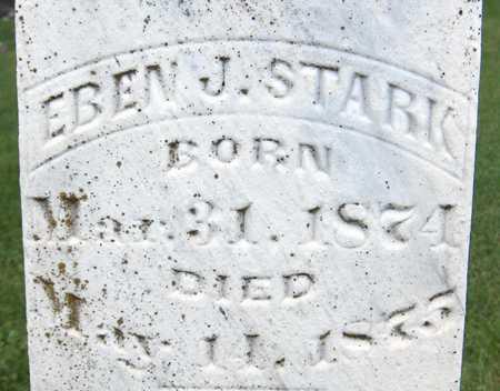 STARK, EBEN J. - Jackson County, Iowa | EBEN J. STARK