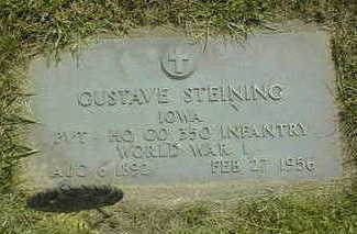 STEINING, GUSTAV - Jackson County, Iowa | GUSTAV STEINING