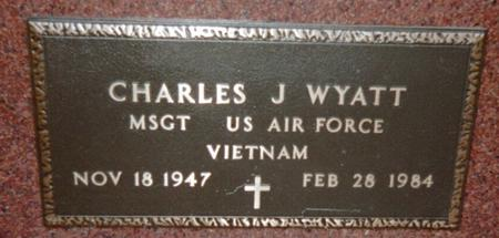 WYATT, CHARLES J. - Jackson County, Iowa | CHARLES J. WYATT