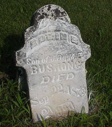 BUSHONG, EDWIN B. - Jasper County, Iowa | EDWIN B. BUSHONG