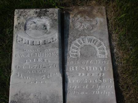 BUSHONG, PHEBE A. AND GEORGE WILSON - Jasper County, Iowa | PHEBE A. AND GEORGE WILSON BUSHONG