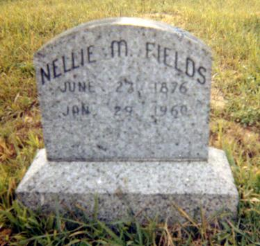 FIELDS, NELLIE MEACHAM - Jasper County, Iowa | NELLIE MEACHAM FIELDS