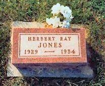 JONES, HERBERT RAY - Jasper County, Iowa | HERBERT RAY JONES
