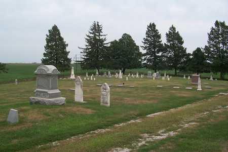 MCELROY, FAMILY STONE - Jasper County, Iowa | FAMILY STONE MCELROY