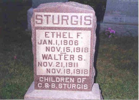 STURGIS, ETHEL F. - Jefferson County, Iowa | ETHEL F. STURGIS