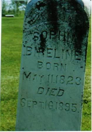 BIRELINE, SOPHIE - Johnson County, Iowa | SOPHIE BIRELINE