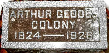 COLONY, ARTHUR GEDDES - Johnson County, Iowa | ARTHUR GEDDES COLONY