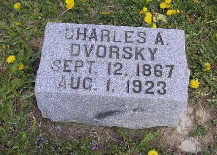 DVORSKY, CHARLES - Johnson County, Iowa | CHARLES DVORSKY
