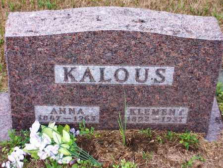 KALOUS, KLEMENT - Johnson County, Iowa | KLEMENT KALOUS