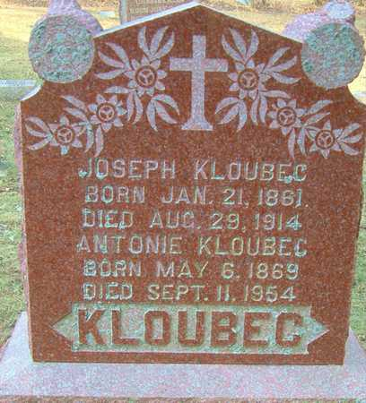 KLOUBEC, ANTONIE - Johnson County, Iowa | ANTONIE KLOUBEC