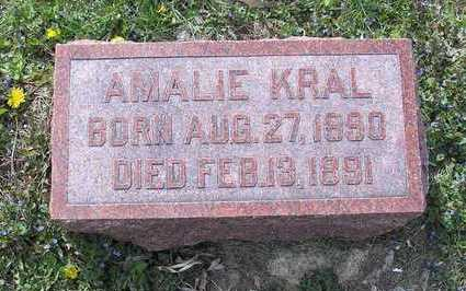 KRAL, AMALIE - Johnson County, Iowa | AMALIE KRAL