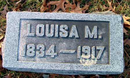 MEHAFFEY, LOUISA M - Johnson County, Iowa   LOUISA M MEHAFFEY
