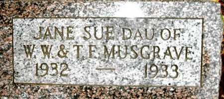 MUSGRAVE, JANE SUE - Johnson County, Iowa   JANE SUE MUSGRAVE