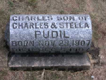 PUDIL, CHARLES - Johnson County, Iowa | CHARLES PUDIL
