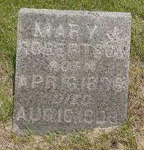 ROBERTSON, MARY J. - Johnson County, Iowa | MARY J. ROBERTSON