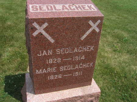 SEDLACHEK, MARIE - Johnson County, Iowa | MARIE SEDLACHEK
