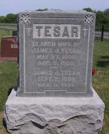 TESAR, JAMES J - Johnson County, Iowa | JAMES J TESAR