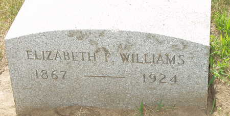 WILLIAMS, ELIZABETH F - Johnson County, Iowa | ELIZABETH F WILLIAMS