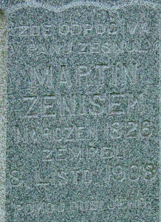 ZENISEK, MARTIN - Johnson County, Iowa | MARTIN ZENISEK