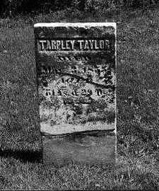 TAYLOR, TARPLEY D. - Jones County, Iowa | TARPLEY D. TAYLOR
