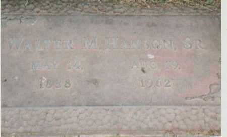 HANSON, WALTER M. SR - Lee County, Iowa | WALTER M. SR HANSON