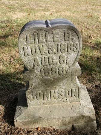 JOHNSON, LILLE B. - Lee County, Iowa | LILLE B. JOHNSON