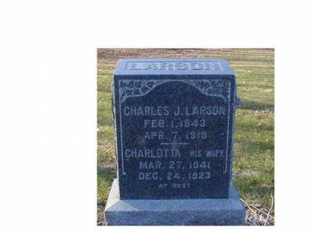 LARSON, CHARLES J., CHARLOTTA - Lee County, Iowa | CHARLES J., CHARLOTTA LARSON