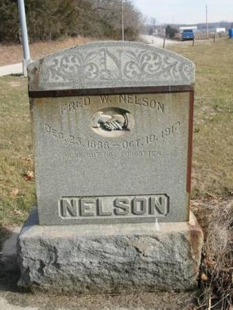NELSON, FRED W. - Lee County, Iowa | FRED W. NELSON