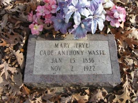 WASTE, MARY - Lee County, Iowa | MARY WASTE