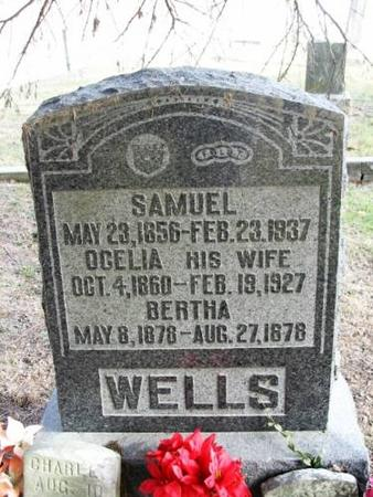 WELLS, SAMUEL - Lee County, Iowa | SAMUEL WELLS