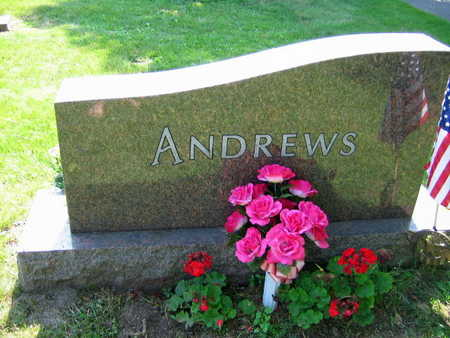 ANDREWS, FAMILY STONE - Linn County, Iowa | FAMILY STONE ANDREWS