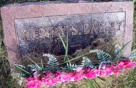 BAILEY, HENRY S. - Linn County, Iowa | HENRY S. BAILEY