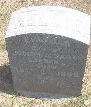 BARNHILL, EVANELLA - Linn County, Iowa | EVANELLA BARNHILL