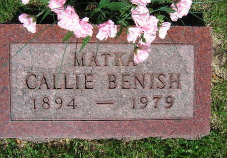 BENISH, CALLIE - Linn County, Iowa | CALLIE BENISH