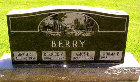 BERRY, DAVID B. - Linn County, Iowa | DAVID B. BERRY