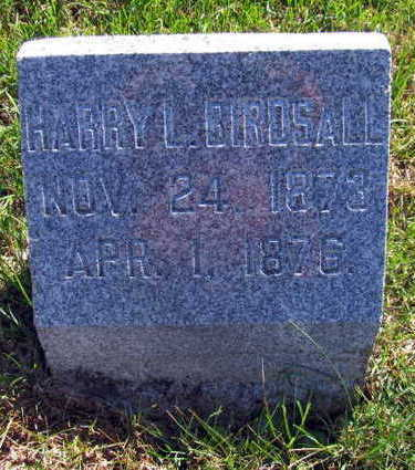 BIRDSALL, HARRY L - Linn County, Iowa   HARRY L BIRDSALL