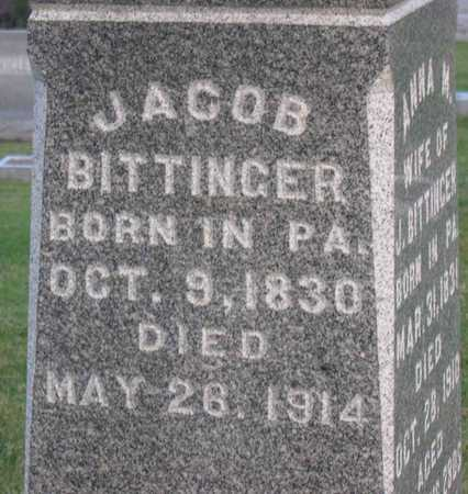 BITTINGER, JACOB - Linn County, Iowa | JACOB BITTINGER