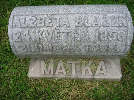 BLAZEK, ALZBETA - Linn County, Iowa | ALZBETA BLAZEK