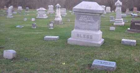 BLESS, FAMILY STONE - Linn County, Iowa | FAMILY STONE BLESS