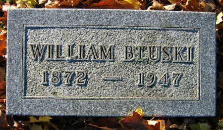 BLUSKI, WILLIAM - Linn County, Iowa | WILLIAM BLUSKI
