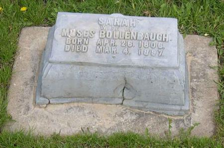 BOLLENBAUGH, SARAH - Linn County, Iowa | SARAH BOLLENBAUGH